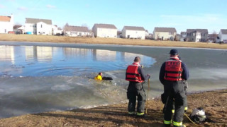 Ind. Swift Water Techs Save Dogs