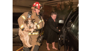 Photo Story: Fort Worth Crews Rescue Two Dogs