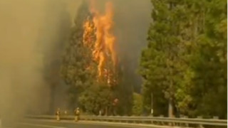 Charges Dismissed in Rim Fire Indictment