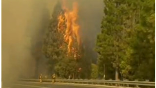 Prosecutors Drop Case in Massive Yosemite Wildland Fire