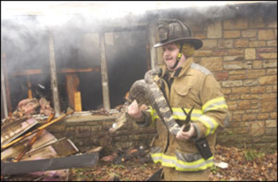 Fire Guts Maryland Zoological Park