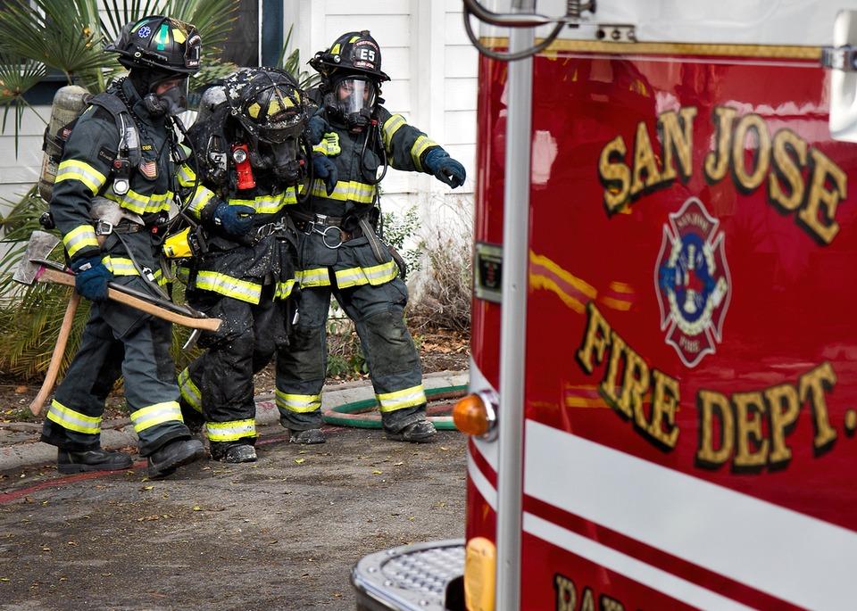 Dog Rescue San Jose