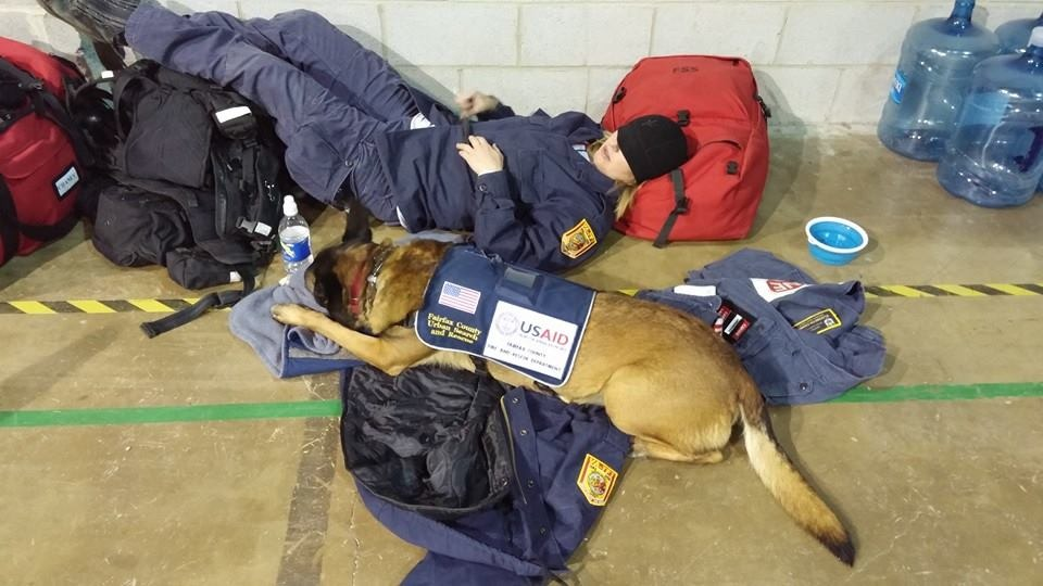 Virginia Search And Rescue Dog