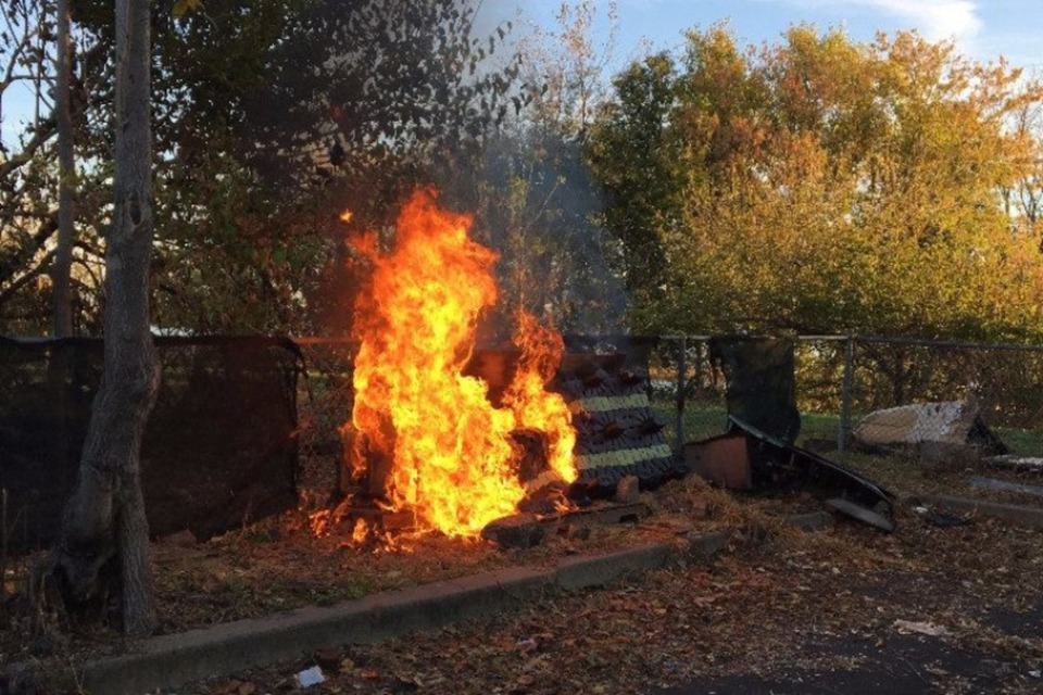 PA Cat Shelters Being Targeted by Arsonist