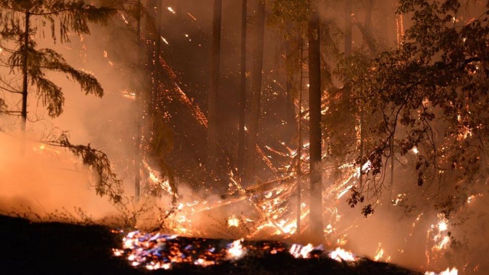 CA Cal Fire Firefighters Wildfire Blaze New Normal Carr Ferguson