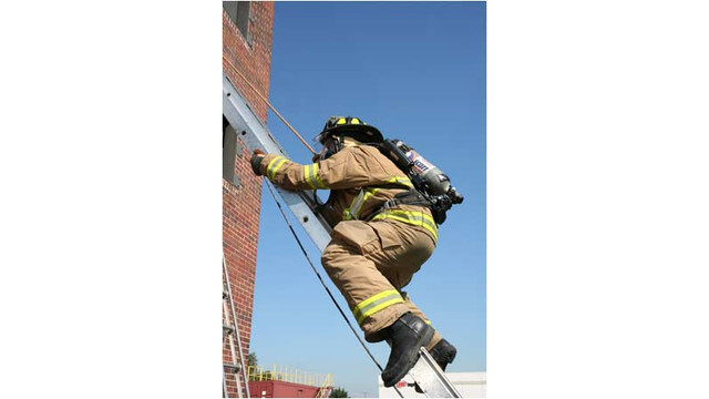 ladder10.jpg_10702057.jpg