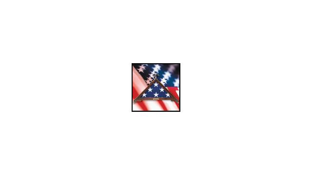 libertyartworksflagcase_10476344.gif
