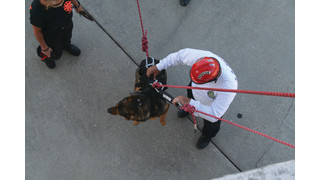 TECHNICAL RESCUE: Louisiana USAR Task Force Trains in Canine-Lift Techniques
