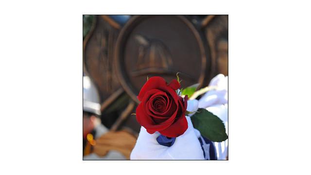 memorial-20-tg.jpg