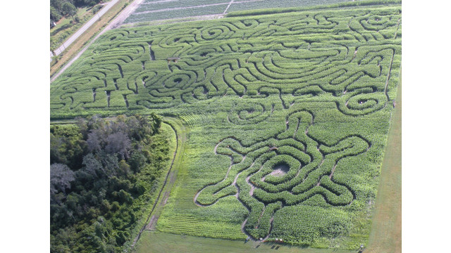 cornmaze_512_middleofdocument_10687701.psd