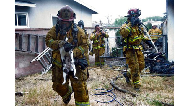 Garden Grove Firefighters Save Pets From House Fire Firehouse