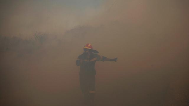 Greek Wildfire.jpg_10730446.jpg