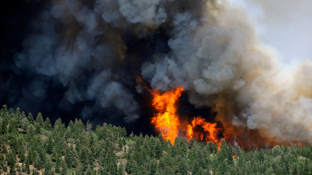 newcoloradowildfire4.jpg