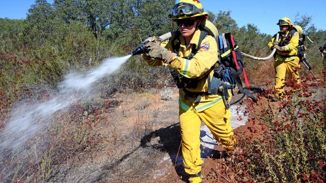 Rose-Grier-brush-fire-2.JPG