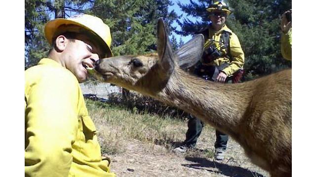 eastsidefirefightersfeeddoe2.jpg