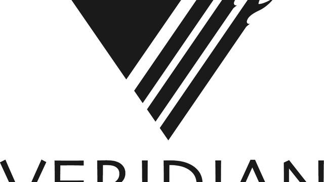 veridian-black-vector-logo_10832349.psd