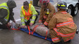 Fla. Firefighters Treat Llama Injured in Truck Crash