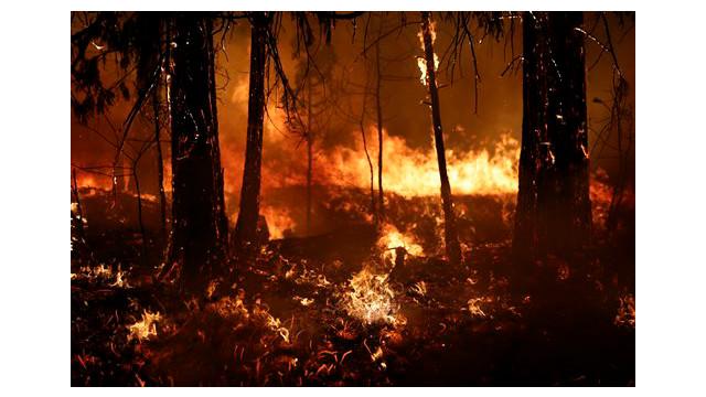 eab77251-336c-4b27-8247-a2e93b71a7bd-Western-Wildfire.sff.jpg