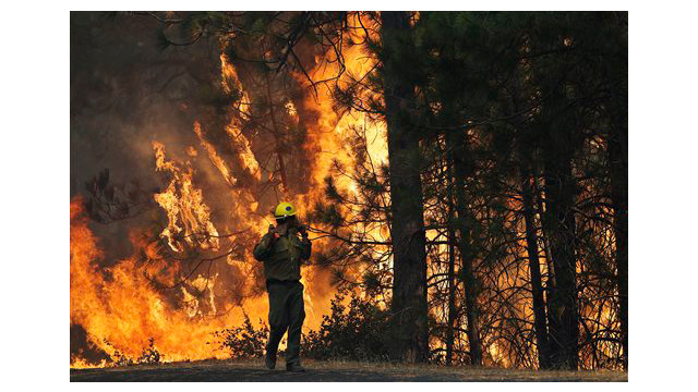 cd9c01e3-7841-432a-ba57-65ab39ccaa28-Western-Wildfire-Yosemite.sff.jpg