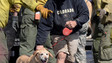 Pets Airlifted to Safety from Flooded Colorado Homes