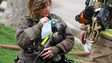 Photo Story: Dog Rescued at St. Paul House Fire