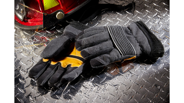 LION Rebel Glove