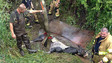 Ore. Firefighters Spend Three Hours Saving Horse