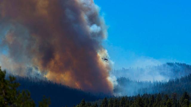 arizona-wildland-fire.jpg